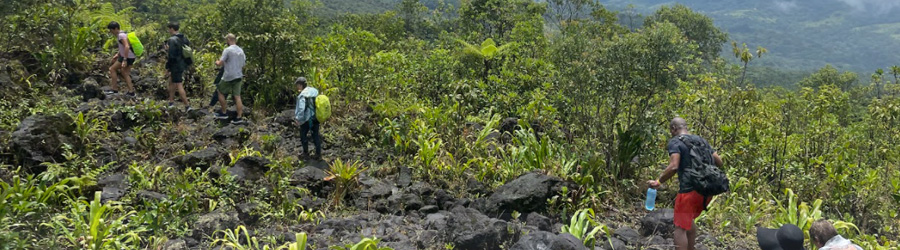 Arenal Volcano Tour + Hot Springs
