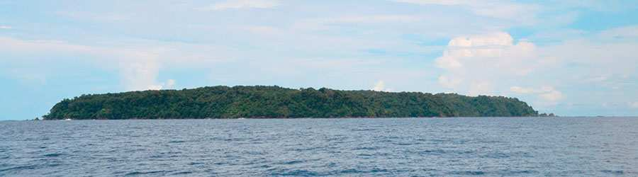 Caño Island Biological Reserve Snorkel Tour