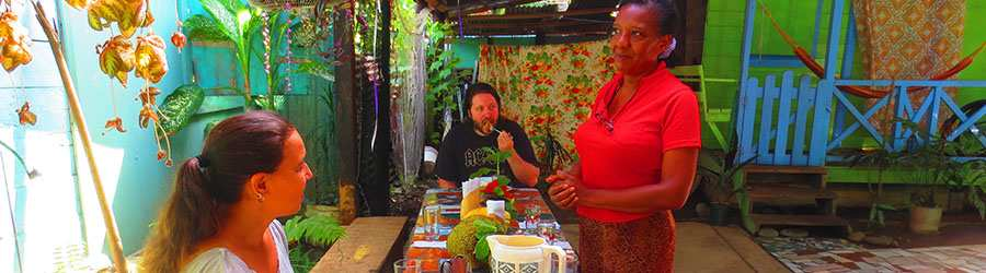 Caribbean Cooking Classes + Afro Caribbean Cultural Tour