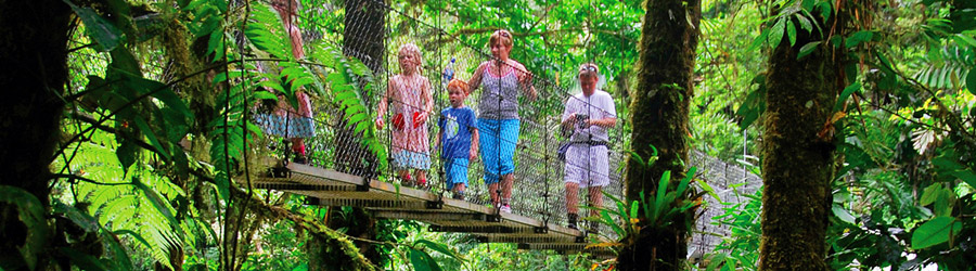 Costa Rica Hanging Bridges + Tarcoles River Eco Cruise