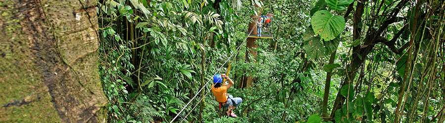 Guanacaste Dry Forest Canopy Tour