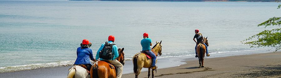 Gulf of Papagayo Horseback Riding Tour
