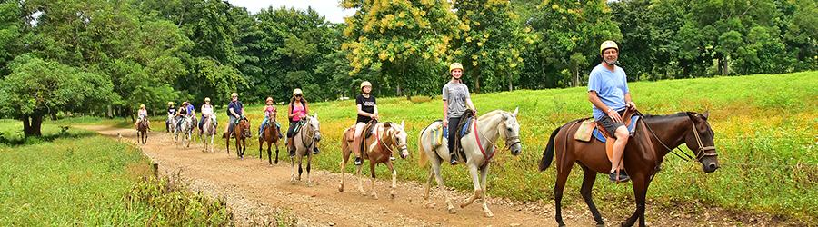 Jungle-and-Waterfall-Horseback-Riding-Tour