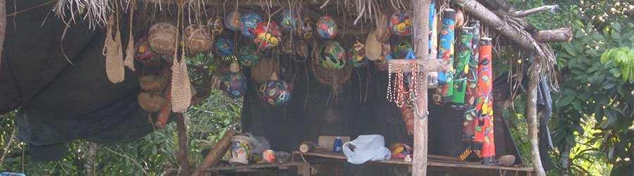 Maleku Indigenous Cultural Tour Arenal Tour Discounts