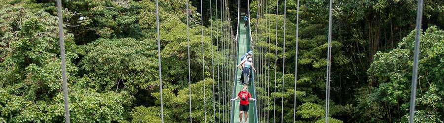 Monteverde Sky Tram and Sky Walk Hanging Bridges