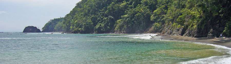 Private Manuel Antonio Express Tour (Private Chauffeur Services)