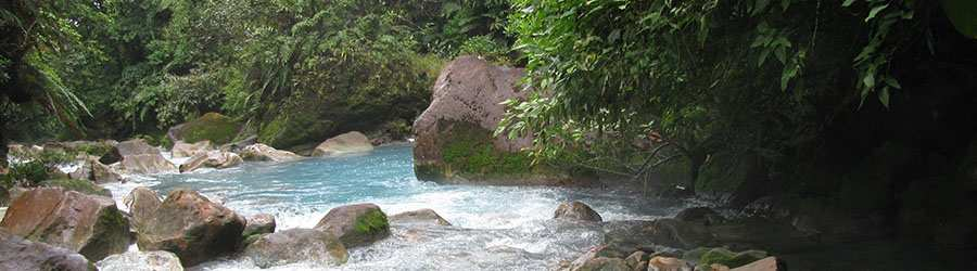 Rio Celeste & Tenorio National Park Hike