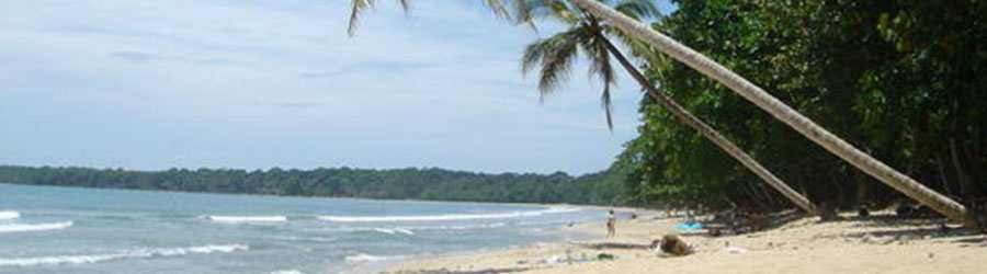 Snorkel & Hiking Tour in Cahuita National Park