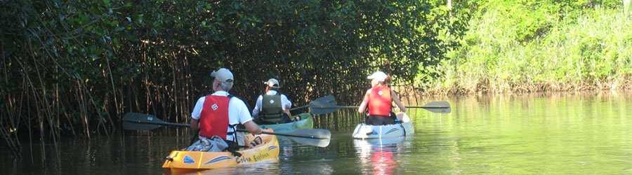 Tamarindo Estuary Kyak Tour