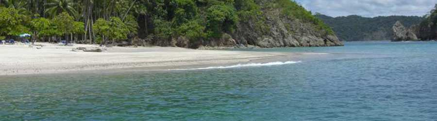 Tortuga Island Tour and Monteverde Overnight Combo Tour