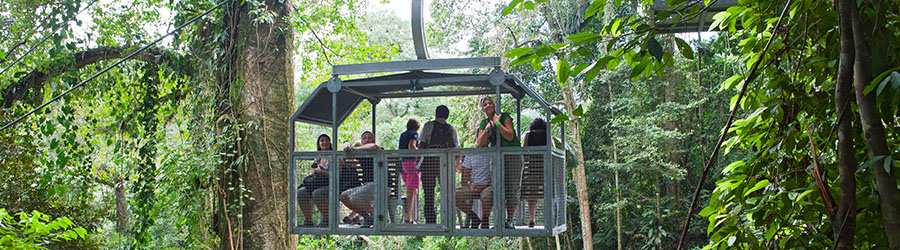 Veragua Rainforest Aerial Tram and Nature Park
