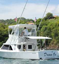 Dream On 33 ft Blackfin 5 Passengers