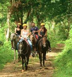 Hacienda Horseback Adventure & Rainforest Aerial Tram Ride