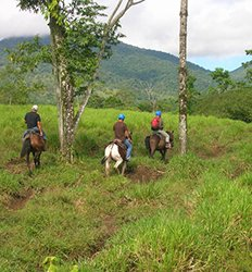 Horseback Ride to La Fortuna Waterfalls
