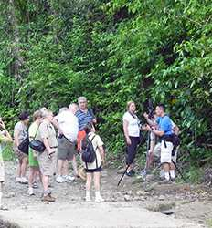 Manuel Antonio National Park Guided Hike