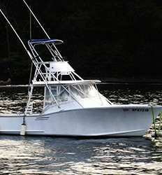 Navegador 32 ft Game fisherman 5 Passengers