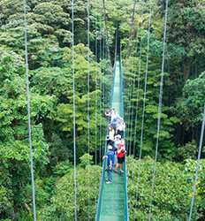 Private Monteverde Cloud Forest Express (Private Chauffeur Services)