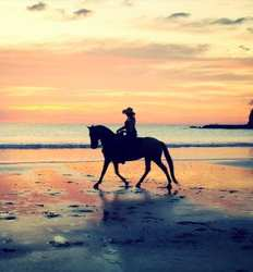 Pura Aventura Sunset Horseback Ride