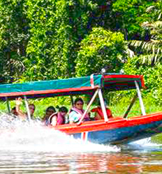 Shuttle In and Out to Tortuguero
