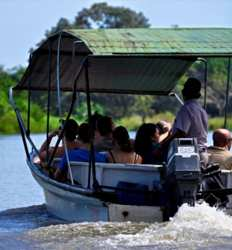 Tamarindo Mangrove Safari Float