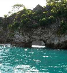 Tortuga Island Tour and Monteverde Overnight
