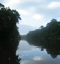 Tortuguero Costa Rica 2 Day Expedition