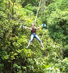 Rainforest Canopy Zip Line Tour + Limon Banana Plantation Combo